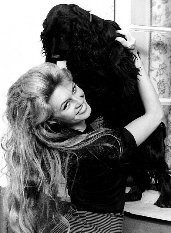 Un jour un destin - Brigitte Bardot 1bcaae7dba1da6d59439a8421d4ef697