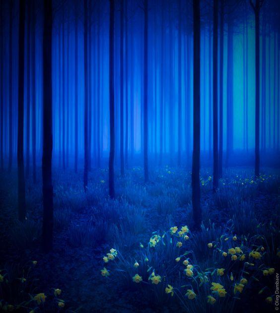 El azul claro y el azul cielo, nos hacen sentir tranquilos y protegidos de todo el alboroto y las actividades del día; también es aconsejable contra el insomnio.