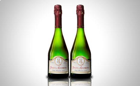 Pack 2 botellas de #Cava l'Avi Pagès Gran Reserva Brut nature Coupatge Especial http://www.doferta.com