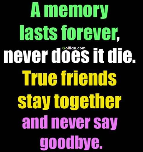 60 Most Beautiful Friendship Memory Quotes Sayings Quotes About Friendship Memories Memories Quotes Friendship Quotes