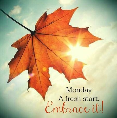 Image result for autumn monday