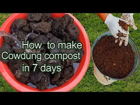 Compost For Sale Near Me