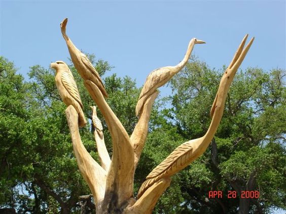 One of the katrina trees in biloxi ms that beach