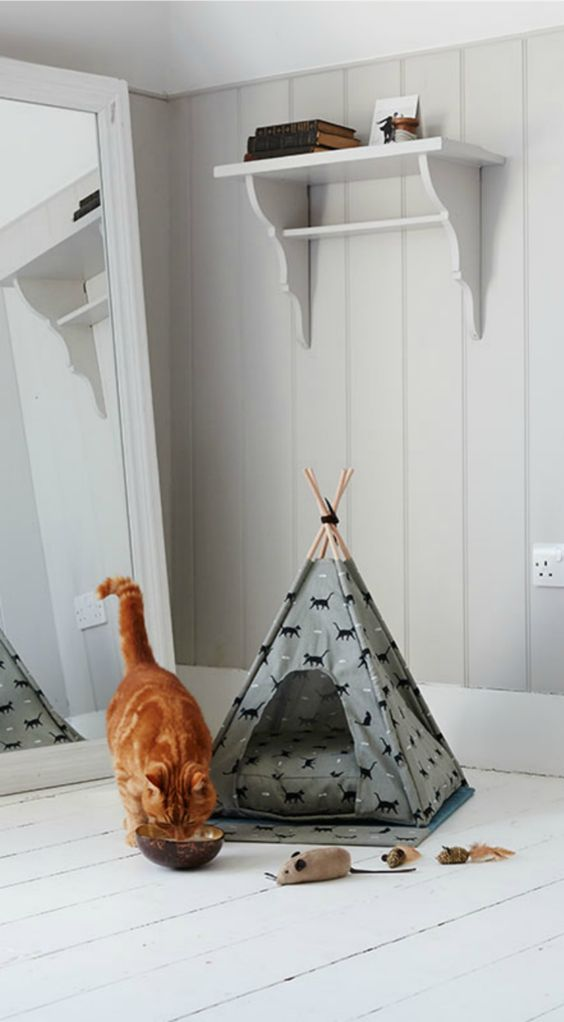 A fun little hideaway for your cat-- a cat teepee! It's fun for your pet but also stylish enough to keep in your living room or bedroom. It comes in a variety of patterns and textures.