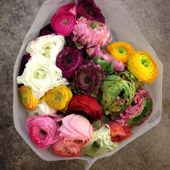 Mixed Colours Of Ranunculus Cloony Arlequin Sold In Bunches Of 10 Stems From The Flowermonger The Wholesale Floral Home Delivery Service