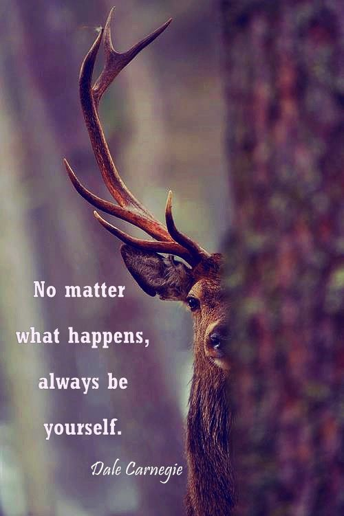 No matter what happens, always be yourself. - Dale Carnegie #quote