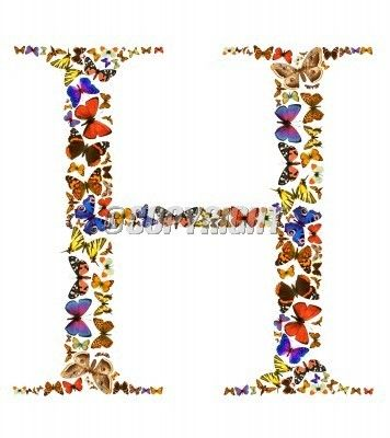 Butterfly font in white. Letter H