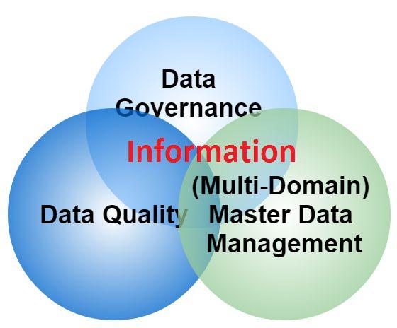 master data management resume