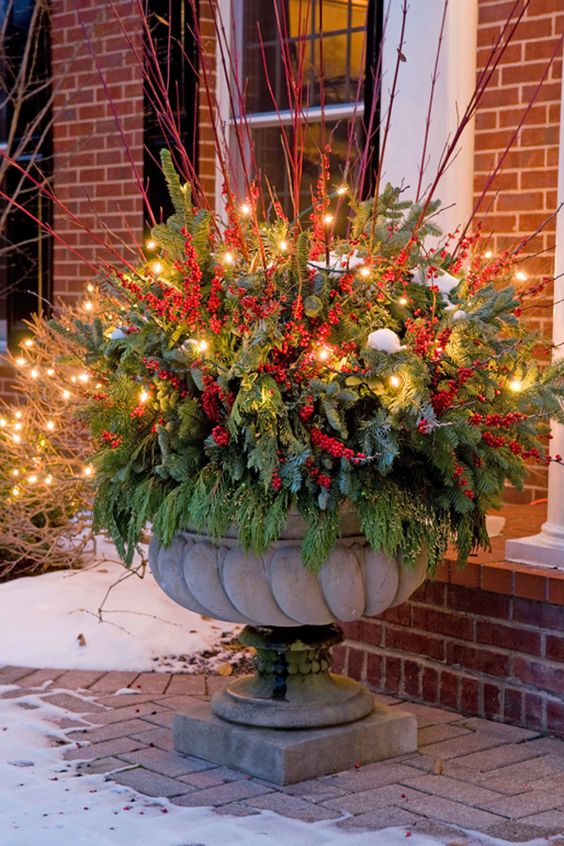 garden containers decorated with colorful twigs, complementing the plant #christmas  #containers #planters #gardenplanters #twigs #OutdoorLighting #backyardLighting #outdoorLights #christmasLights