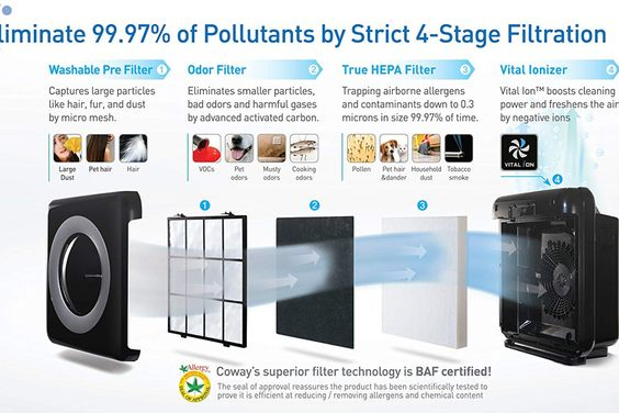 Coway Mighty Air Purifier With True Hepa And Eco Mode In 2020 Air Purifier Reviews Hepa Air Purifier Room Air Purifier