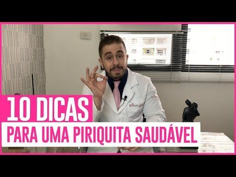10 Dicas Para Uma Piriquita Saudavel Dr Bruno Jacob Youtube