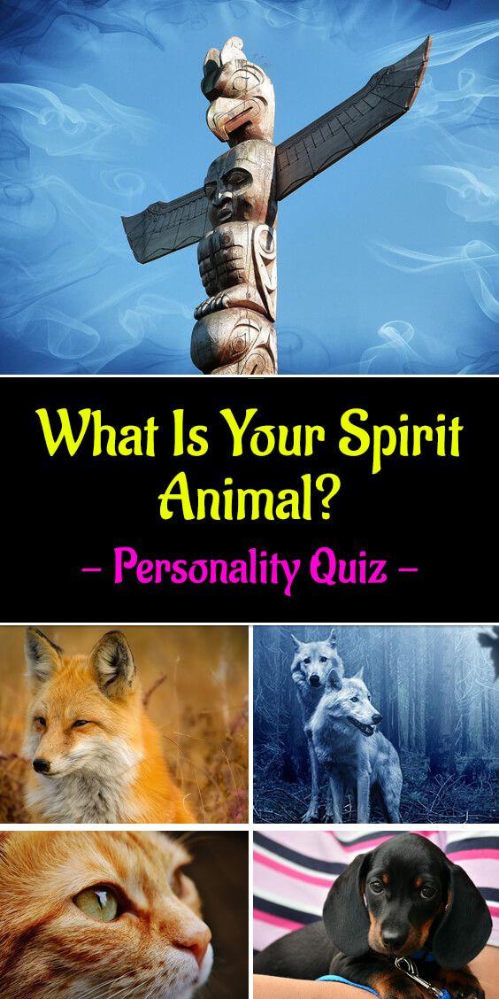 What Is Your Spirit Animal Your Spirit Animal Spirit Animal