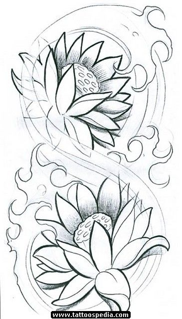 Japanese Flower Line Drawing : Water lily drawings for tattoos outline http