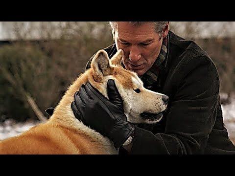 Siempre A Tu Lado Película Familiar Completa En Español Latino Hd Películas De Mascotas Hachiko Y Películas De Aventuras Películas Familiares Peliculas
