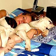 Sleeps With Dogs: Sleeping Dogs, Bed Buddies, Lifestyle