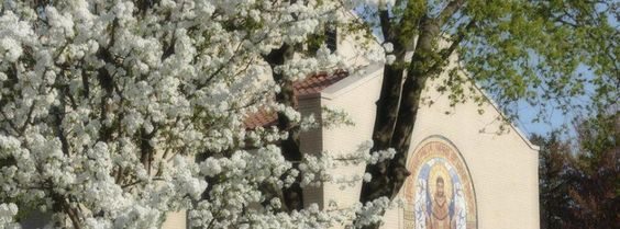 Spring at our Motherhouse Grounds #SylvaniaFranciscans #SpringHasSprung