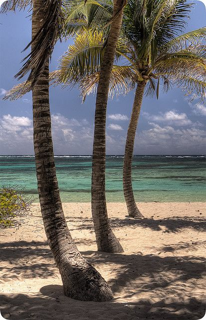 Petitie-Terre, Guadeloupe #Caribbean