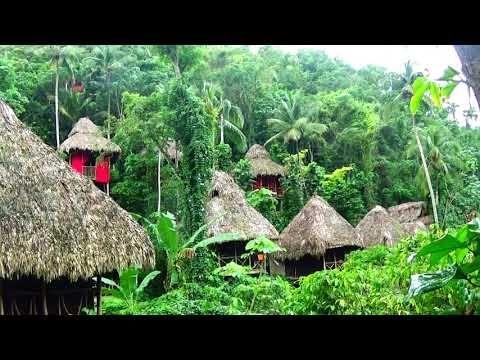Hotel Ecologico Dominican Tree House Provincia Samana Region Nordeste Re Enjoyment