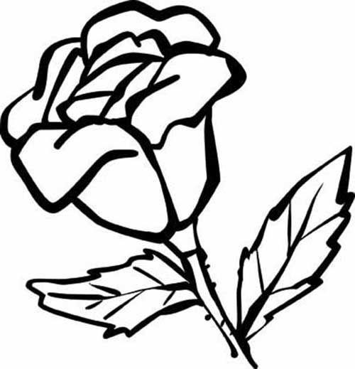 #flores http://colorindo.org/flores/