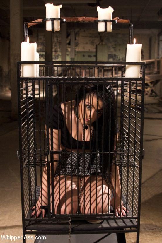 Bdsm slave cage