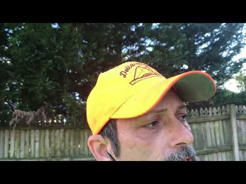 How To Remove Lichen From Asphalt Roof Shingles Roof Cleaning Asphalt Roof Shingles Asphalt Roof