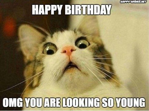 Happy Birthday Woman Meme With Shocked Cat Meme Teacher Memes Funny Funny Thanksgiving Memes Teacher Humor