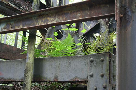 Völklinger Hütte - die Natur erobert sich das Gelände zurück