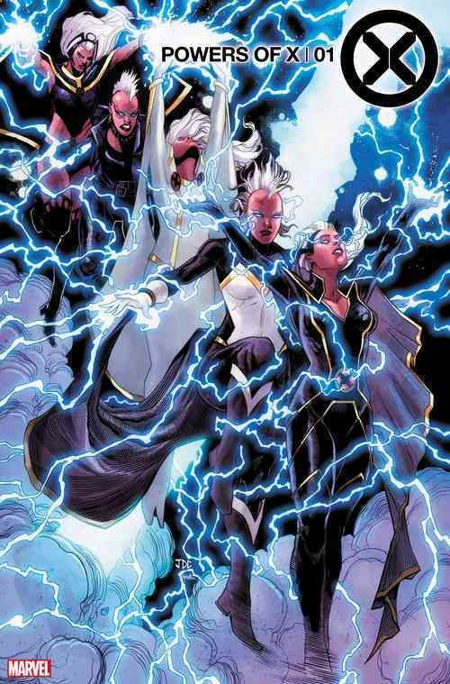 Powers Of X 1 Character Decades Variant All For Geeks Storm Marvel Comic Book Artwork Marvel Comics Art