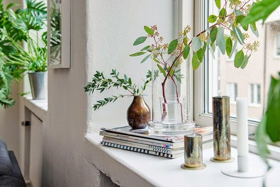 Decorar con plantas las repisas