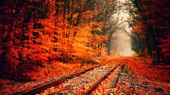 Autumn Tumblr Wallpaper Background #ypz 1920x1080 Px 414