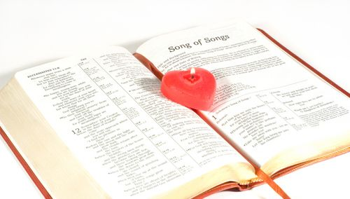 Song of Songs The Rabbis taught: All the writings are holy, but the Song of Songs is the Holy of Holies.