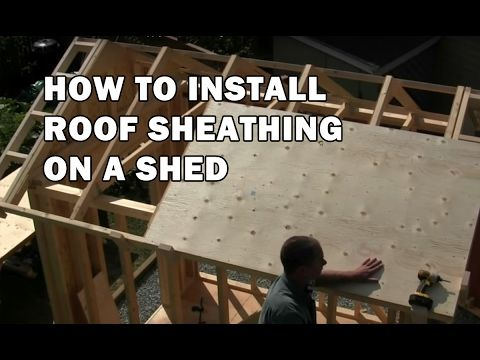 How To Build A Shed Sheathing The Roof Video 10 Of 15 Youtube Building A Shed Shed Plans Shed