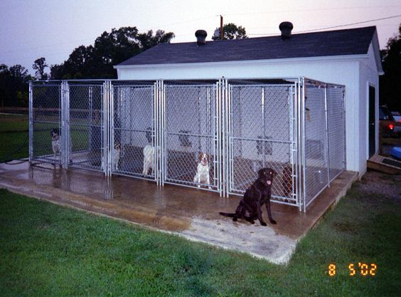 Google image result for for Indoor outdoor dog kennel design