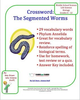 Phylum Annelida Segmented Worms Crossword Puzzle
