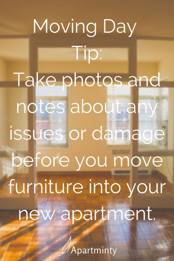 tips for moving into your first apartment moving tips apartment life apartminty moving. Black Bedroom Furniture Sets. Home Design Ideas