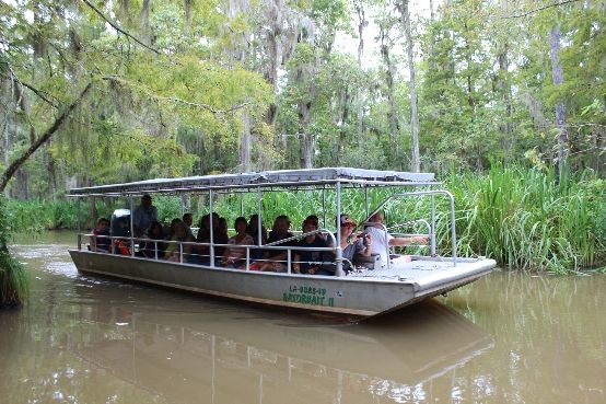 Cajun Tours Swamp