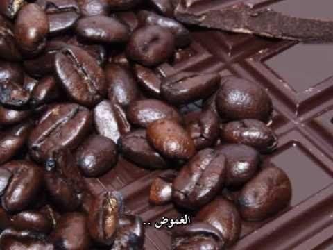 كيف تصنع الشكولاتة ؟ [ مترجم للعربية ] How Chocolate is Made