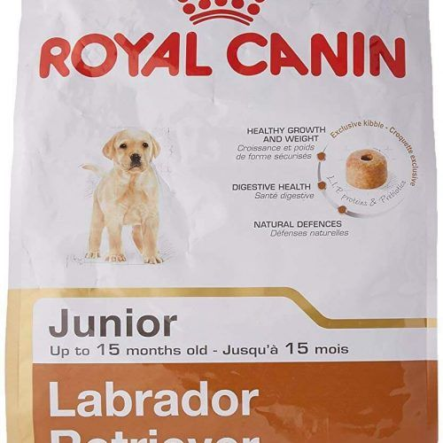 Pin By Shopping Online Here On Https Shoppingonlinehere Com Dry Dog Food Adult Dogs Promo Codes