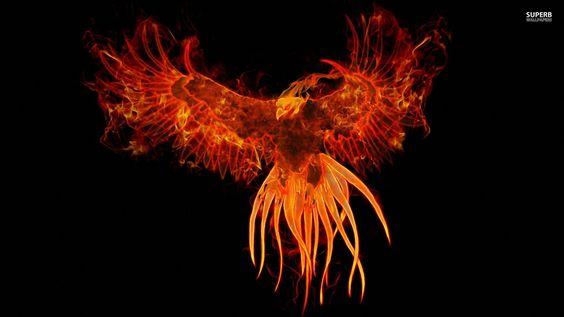 Firebird Wallpaper » WallDevil - Best free HD desktop and mobile wallpapers