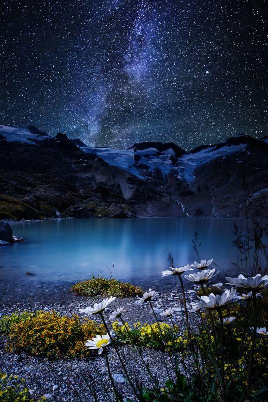 Night Shot Nature Beautiful Nature Night Skies