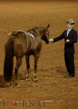 Showmanship Tip: Aim for telepathic communication with your horse. The ultimate goal in showmanship is to get your horse to setup almost without being told. #halterhorse #showmanship #AQHA