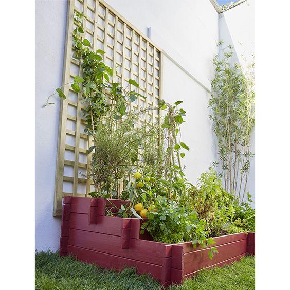 Avec ce carr potager tages faites poussez l gumes ou plantes aromatique m me dans un tout - Petit jardin potager carre ...