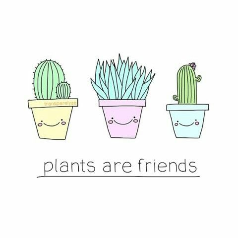 plants are friends cute tumblr drawing transparent tumblr pinterest plants and friends. Black Bedroom Furniture Sets. Home Design Ideas
