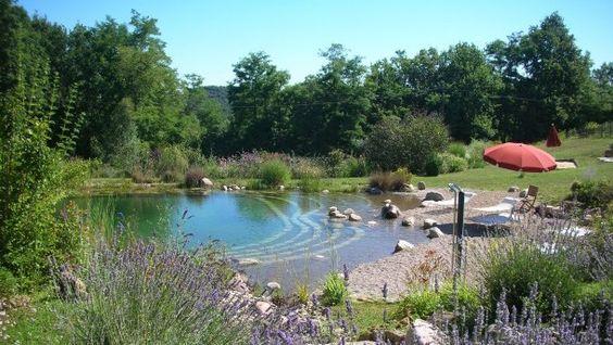 Pourquoi une piscine cologique natural swimming ponds for Piscine ecologique