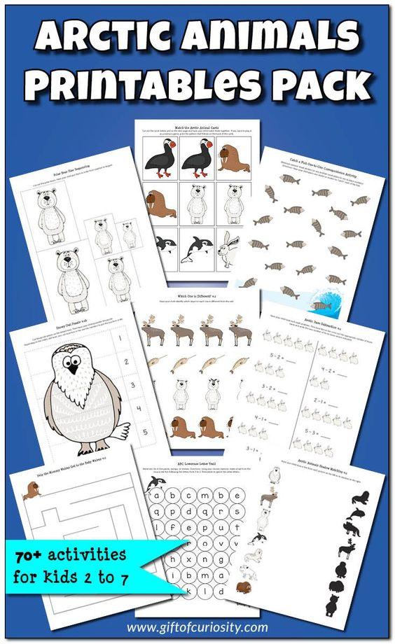 arctic animals printables and unit studies on pinterest. Black Bedroom Furniture Sets. Home Design Ideas