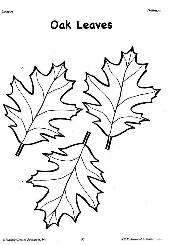 Printable Fall Leaves Patterns A sample from the teacher ...