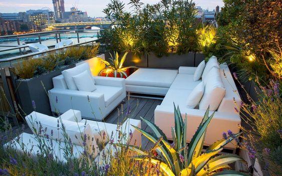 Rooftop And Balcony Garden ( )