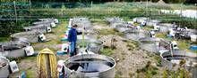 Alle mennesker har ret til rent vand