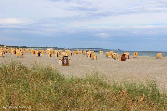 Kebo unterwegs... #Ostsee #Fehmarn #Südstrand #Germany
