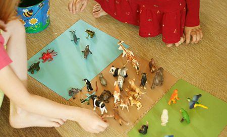 Animal Unit: Sort animals based on habitat (land vs. sea dwellers, ground vs. tree dwellers).